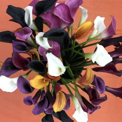 Mini Calla Assorted Color 50-55 cm