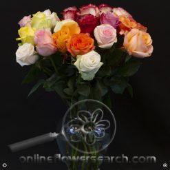 Fun Pack Rainbow Bunches Roses 50 cm