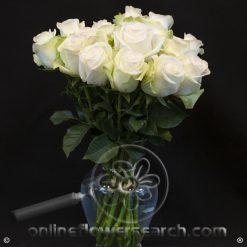 Fun Pack White Roses 50 cm