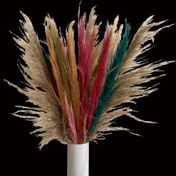 Preserved Pampas Grass Slim Tinted Colors
